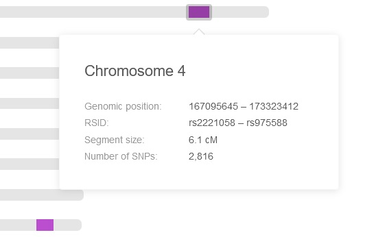 Example of shared DNA segment on Chromosome 4 on My Heritage